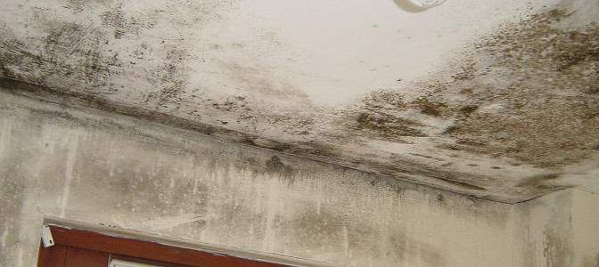 A Few Ways of Dealing With Damp Proofing Walls
