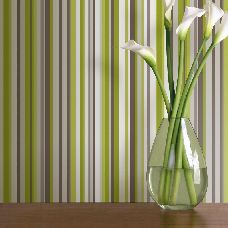 Arthouse Sophia Stripe Wallpaper In Green