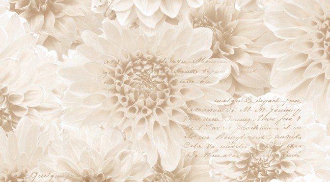 Muriva Chrysanth Wallpaper In Natural