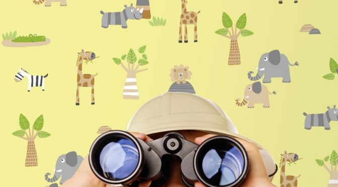 Fun Designs with Debona Zoo Wallpaper